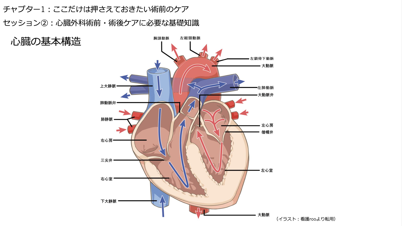 【全12回】心臓外科患者のケア