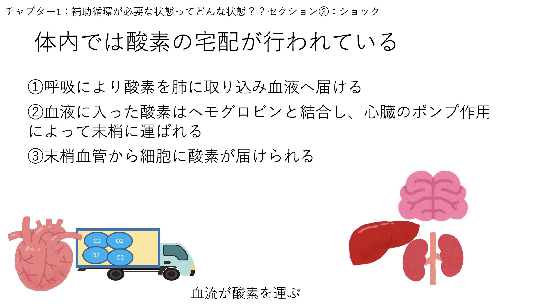 【全13回】補助循環装着患者の看護 (基礎編)