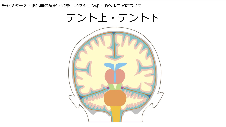 【全12回】脳卒中患者ケア
